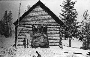 14-year old Chris Hamling Jr. with the massive grizzly he shot, c. 1920.