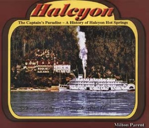 Halcyon book cover