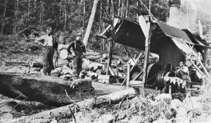 A large steam donkey was used to run the highlead system. It was one of very few in the BC interior where timber was plentiful enough to make it viable.